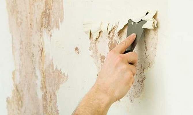 Снятие старого слоя краски со стен