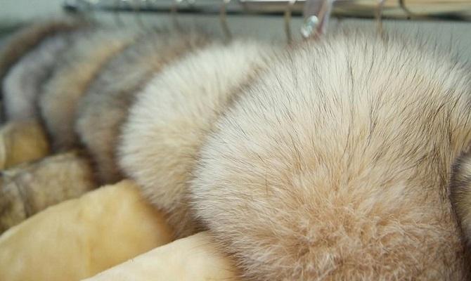 Как почистить меховой воротник в домашних условиях - советы специалистов