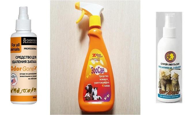 Как в домашних условиях вывести запах кошачьей мочи