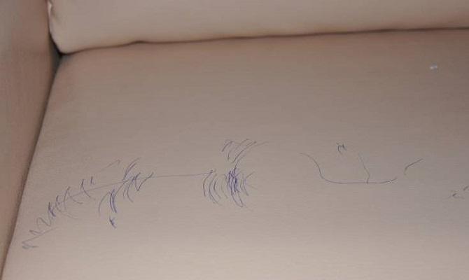 Как удалить пятно от шариковой ручки с зам фото