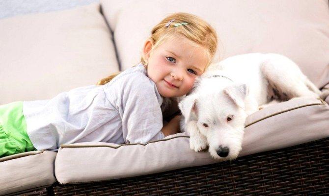 Как очистить диван от детской мочи?