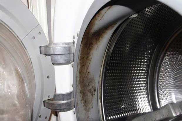 Как почистить стиральную машину от плесени?